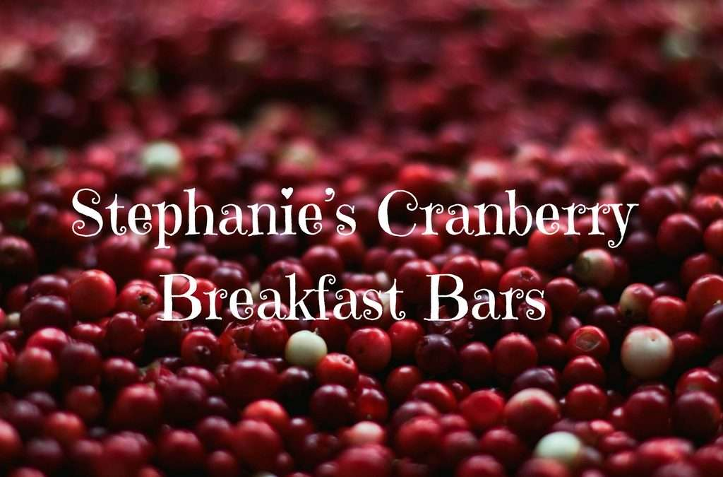 Stephanie's Cranberry Breakfast Bars (Paleo)