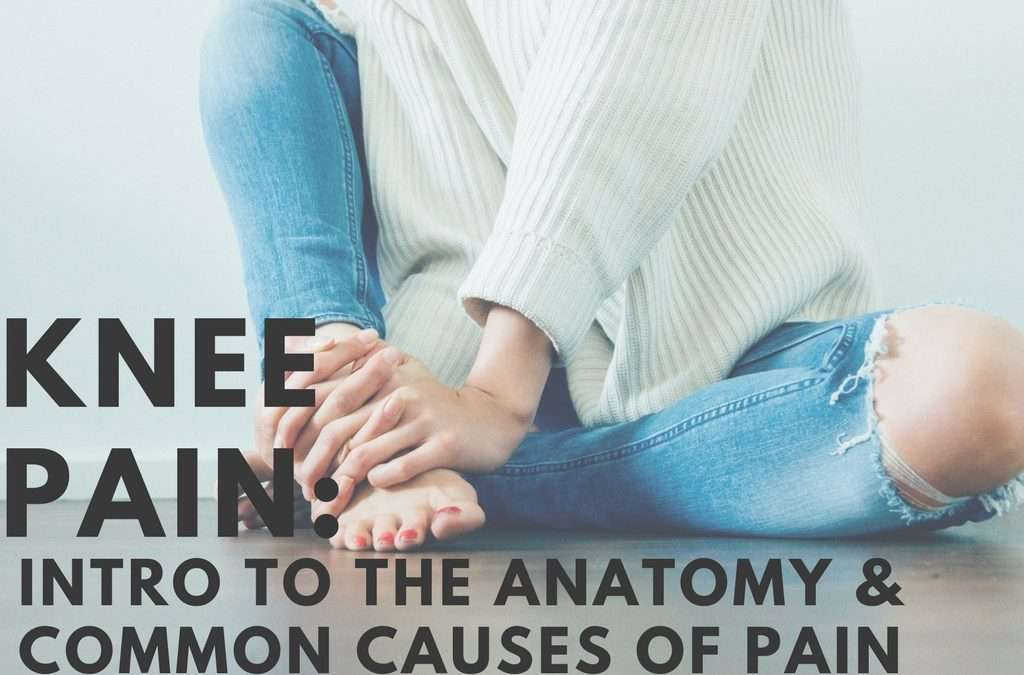 Knee Pain: Intro to the Anatomy & Causes of Pain