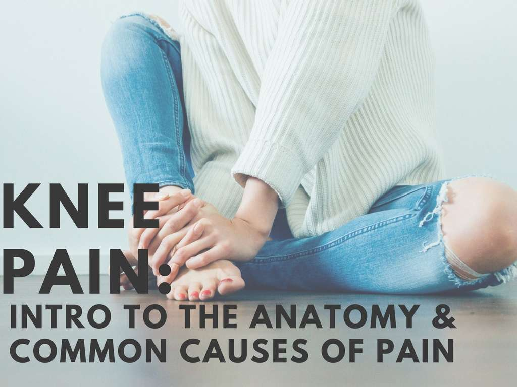 Knee Pain: Intro to the Anatomy & Causes of Pain - Gordon Physical ...