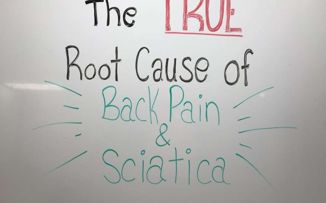 Uncovering the TRUE Root Cause of Back Pain & Sciatica